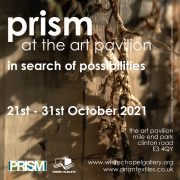 IN SEARCH OF POSSIBILITIES